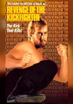 Return of the Kickfighter