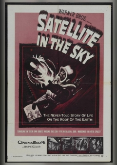 Satellite in the Sky