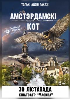 Амстэрдамскі кот
