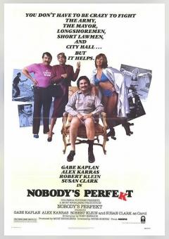 Nobody's Perfekt
