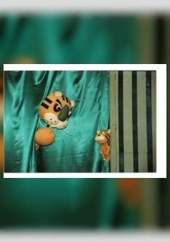 Online Performance Petrik the Tiger