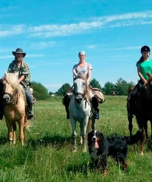 Прогулки на лошадях в Минске и чем занять ребёнка во время осенних каникул